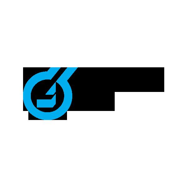 logo_lhoist_0